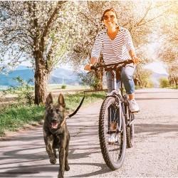 Fahrradleine mit Zugbremse