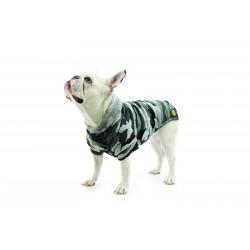 Fashion Dog -...